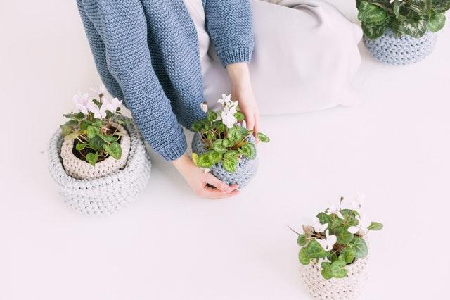 Best Way To Keep Flowers Last Longer