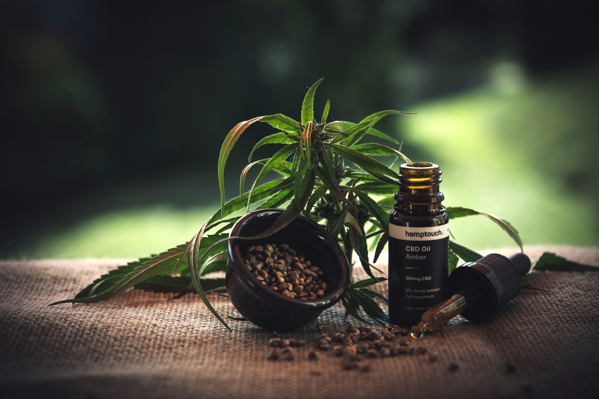 Everything to Consider When Choosing an Online CBD Oil Store